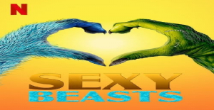 Poster banner de Sexy a lo bestia