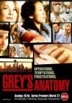 Poster pequeño de Anatomía de Grey