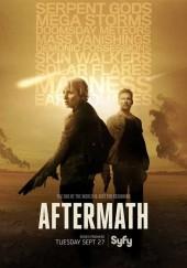 Poster de Aftermath