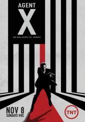 Poster de Agent X