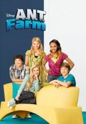 Poster de A.N.T. Farm: Escuela de talentos