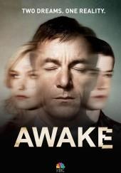Poster de Awake