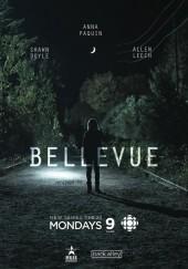 Poster de Bellevue