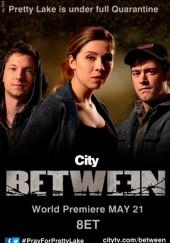 Poster de Between