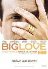 Poster de Big Love