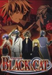 Poster de Black Cat