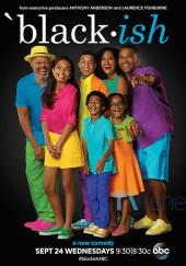 Poster de Black-ish