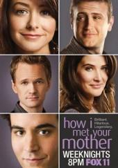 Poster de Cómo conocí a vuestra madre