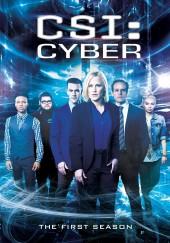 Poster de CSI: Cyber