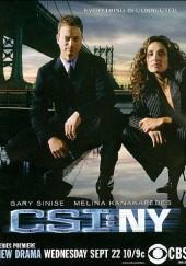 Poster de CSI: Nueva York