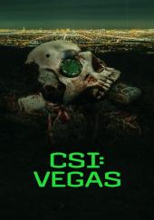 Poster de CSI Vegas