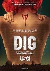 Poster de Dig