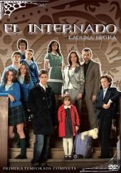 Poster de El internado