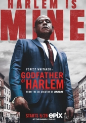 Poster de El padrino de Harlem (Godfather of Harlem)