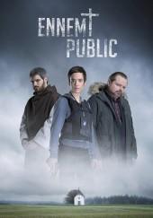 Poster de Enemigo público