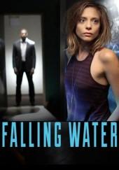 Poster de Falling Water