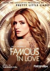 Poster de Famous in Love