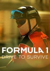 Poster de Formula 1 La Emocion De Un Grand Prix