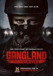 Poster de Gangland Undercover (TV)