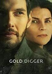 Poster de Gold Digger