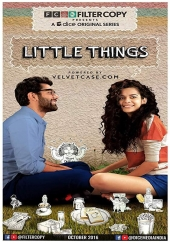 Poster de Little Things