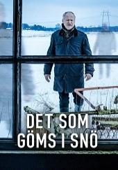 Poster de Lo que está oculto en la nieve