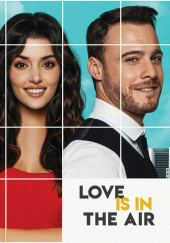 Poster de Love is in the Air