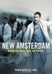 Poster de New Amsterdam 2018
