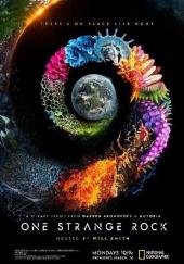 Poster de Nuestro planeta