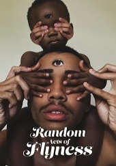 Poster de Random Acts of Flyness