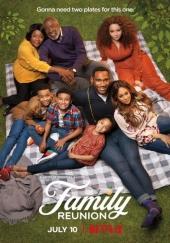 Poster de Reunion familiar (Family Reunion)