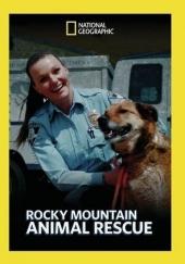 Poster de Rocky Mountain Animal Rescue