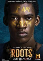 Poster de Roots