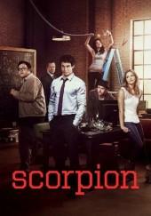 Poster de Scorpion