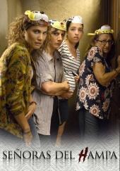 Poster de Señoras del (H)AMPA
