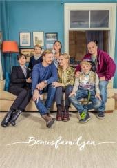 Poster de The Bonus Family
