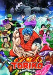 Poster de Toriko