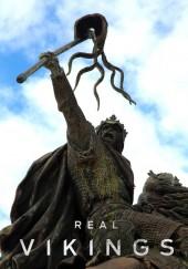 Poster de Vikingos al descubierto