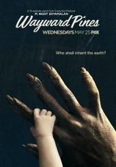 Poster de Wayward Pines
