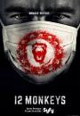 12 monos (Doce monos)